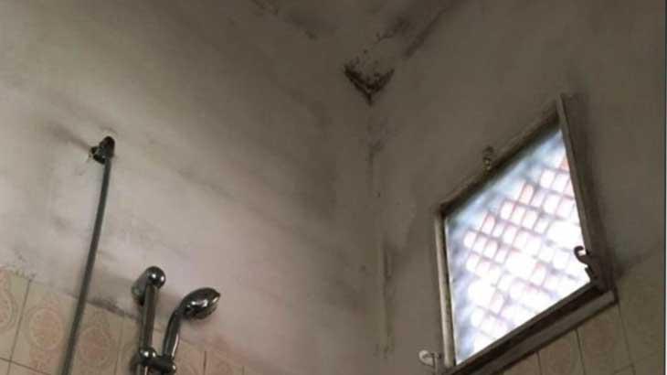 Отзыв об отеле «Eliseo 3* и потолок в санузле с плесенью в реальности